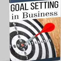 Free Business Goal Planning PLR Bundle