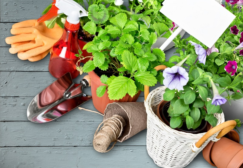 GardeningPLR