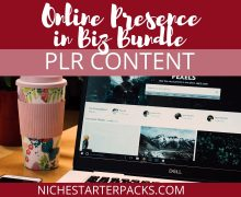 OnlinePresenceBizPLRBundle-BlogPost