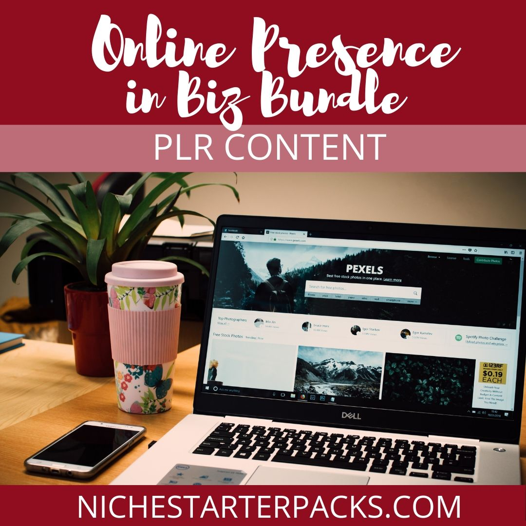 OnlinePresenceBizPLRBundle-FEATURED